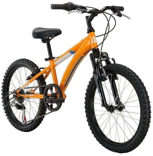 Best Mountain Bike for 10 Year Old Boy