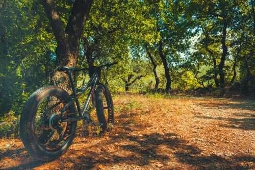 Best Bike For Heavy Riders